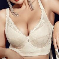 Plus Size Embroidery Gather Plunge Thin J Cup Push Up Bra Long Lined Lace Bra In Nigeria-plus-size-embroidery-gather-plunge-thin-j-cup-push-up-long-lined-lace-bra-thumb